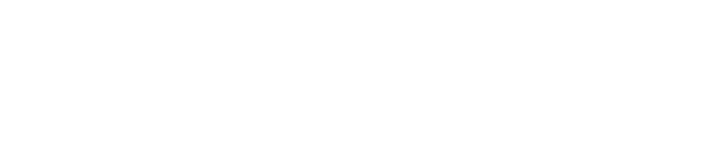 Logo Holzverarbeitung Bornhake weiss